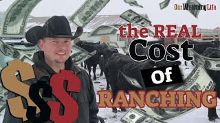 Download The Cost of Ranching Video