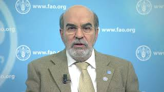 Download FAO Director-General addresses the 17th Session of the UN Permanent Forum on Indigenous Issues Video