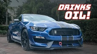Download GT350 OIL CONSUMPTION! How BAD is it? Video