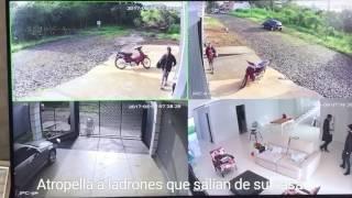 Download Mira lo que hace cuando descubre que unos ladrones salían de su casa Video