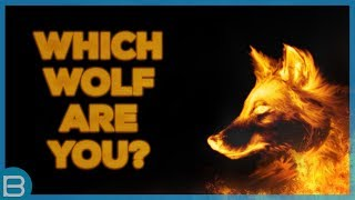 Download What Type Of Wolf Are You? Video