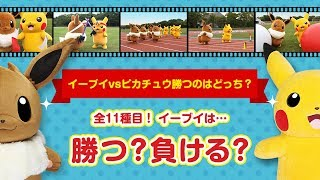 Download 【公式】イーブイ vs ピカチュウ勝つのはどっち? (全11種目総集編) Video