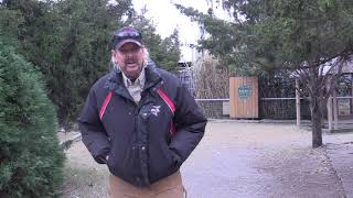 Download Joe Exotic For Governor Message 2 Video