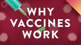 Download Why Vaccines Work Video