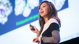 Download A lesson in Bacteria | Elaine Hsiao Video