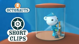 Download Octonauts: Close Call With An Ice Wall Video