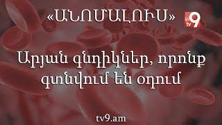 Download Արյան գնդիկներ, որոնք գտնվում են օդում. «Անոմալուս» Կարեն Եմենջյանի հետ Video