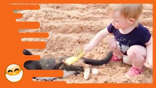 Download Baby and Cat are Best Friends - Funny Pets Videos Video