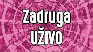 Download Zadruga UZIVO 24/7 (Sloba i Kija) [Full HD] Video