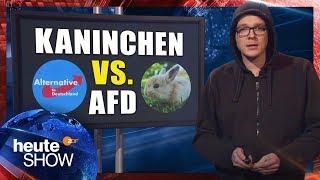 Download Nico Semsrott vergleicht sein Kaninchen mit der AfD | heute-show vom 08.12.2017 Video