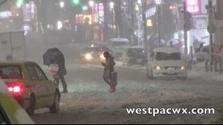 Download Tokyo Snow Storm Footage 2014 東京吹雪のビデオ Video