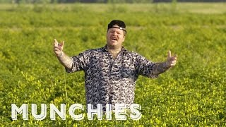 Download MUNCHIES Presents: The Home of Hot Sauce with Matty Matheson Video