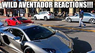 Download My New Lamborghini Aventador | Closer Look | Crazy Reactions! Video