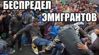 Download Эмигранты разносят Европу. Фатальный беспредел. ДОКУМЕНТАЛЬНЫЙ ФИЛЬМ 2017 Video