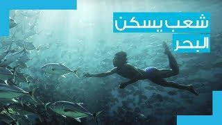 Download شعب يسكن البحر كالأسماك.. ماذا تعرفون عن قبائل الباجاو في أندونيسيا؟ Video