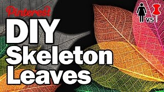 Download DIY Skeleton Leaves, CORINNE VS PIN #15 Video