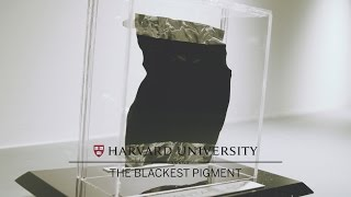Download Harvard Art Museums' blackest pigment Video