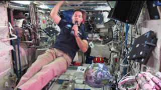 Download New Space Station Crew Member Discusses Life in Space with French Journalists Video