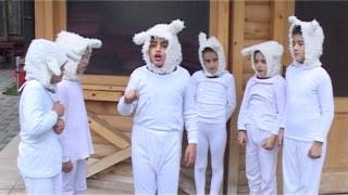 Download Ujku me shtate kecat Video