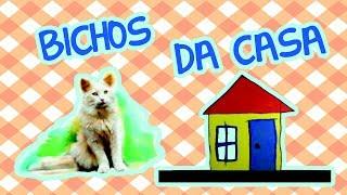 Download BICHOS DA CASA | BEBÊ MAIS BICHOS Video