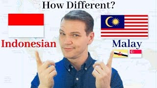 Download How Different Are Indonesian and Malay?! Video