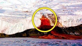 Download Антарктида под грифом «строго секретно»! Обнаруженное во льдах повергло в ступор даже бывалых. Video