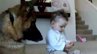 Download Ava steals Brano's Treat (See Brano in Book too). Video