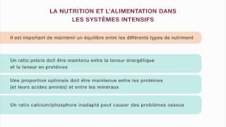 Download Nutrition et alimentation en aviculture familiale – Le système intensif à petite échelle Video