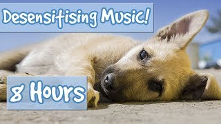 Download Desensitising Dog Music! Music with Sound Effects to Desensitise Dogs to Noises, Reduce Anxiety!🐶💤 Video