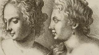 Download Leonardo, Rapunzel and the Mathematics of Hair - Professor Raymond E. Goldstein Video