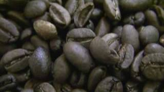 Download Aroma Coffee Factory Bandung Indonesia Video