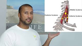 Download Painful Turning Neck - Release Scalene Trigger Points Video