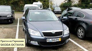 Download Удачная покупка в Германии Skoda Octavia и неудачные поиски VW Golf7 Video