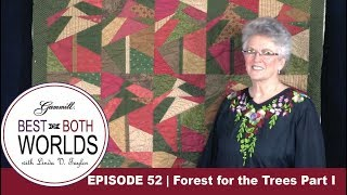 Download Best of Both Worlds 52 | Trees for the Forest Video