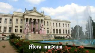 Download A beautiful Hungarian town Szeged Video