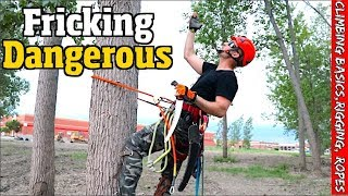 Download Tree work for the Beginner. How to climb, Set rigging, Spurs, Ropes & harness. Video