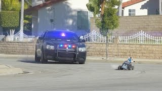 Download Cat Cop Chase Video