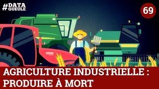 Download Agriculture industrielle : produire à mort #DATAGUEULE 69 Video