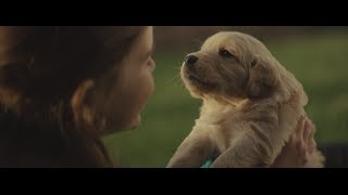 Download 2014 Chevy Commercial - Maddie Video