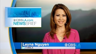 Download CBSLA Late-Afternoon Newsbrief (Nov. 29) Video