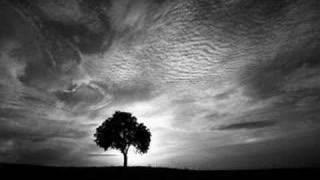 Download Jacek Wójcicki ″Miejcie nadzieję″ Video