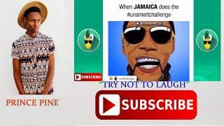 Download Marvin The Beast Craziest Moments Part #3  Jamaican Dance Video