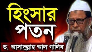 Download Hingshar Poton | হিংসার পতন Video