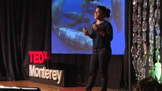 Download An unorthodox life: Asha de Vos at TEDxMonterey Video