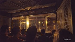 Download [4K] Best Tower of Terror Ride in the World - Walt Disney World - Disney's Hollywood Studios Video