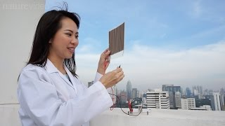Download Women in science: A chemist in Thailand Video