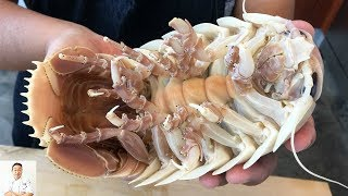 Download GRAPHIC: Real Live Isopod Hour | Cut, Clean, Cook Video