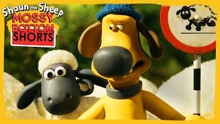 Download Stand Off - Shaun the Sheep [Full Episode] Video