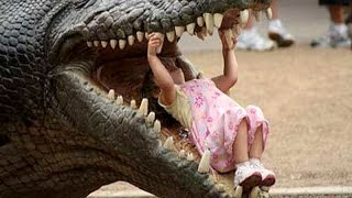 Download Most hilarious BABY & TODDLER & KID videos #2 - Funny and cute compilation- Watch and laugh! Video