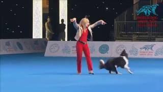 Download FCI Dog dance World Championship 2016 – Winner freestyle - Yvonne Belin and Alice (Switzerland) Video